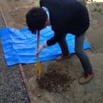 樹木植え込みDIY:鶴見の家